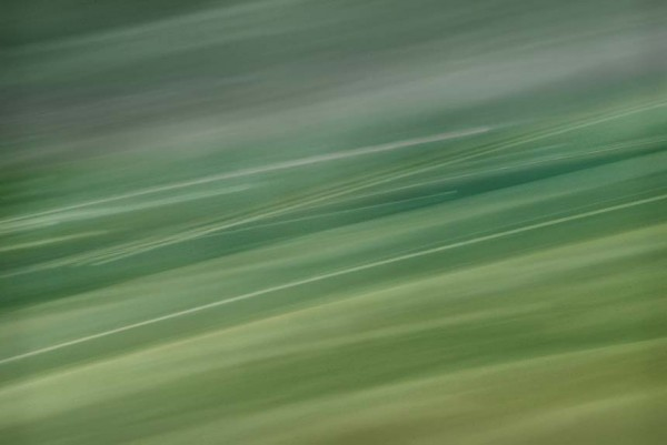 Light Signatures series, day, colour photograph, art, abstract, abstract expressionism, creative, city street, urban, downtown, cityscape, speed, blur, movement, motion, green, muted, streaks, patterns