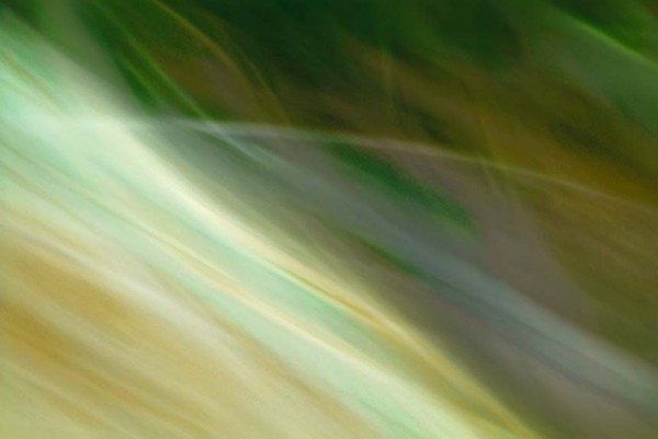 Light Signatures series, day, colour photograph, art, abstract, abstract expressionism, creative, city street, urban, downtown, cityscape, speed, blur, movement, motion, green, muted, streaks, waves, patterns