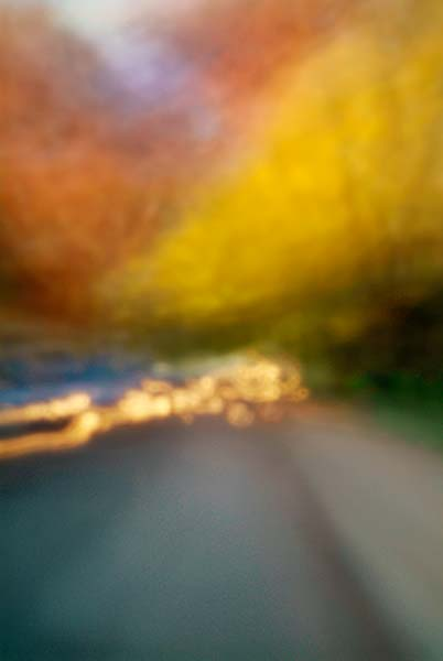 Convergent series, day, colour photograph, art, abstract, abstract expressionism, creative, city street, urban, downtown, cityscape, speed, blur, movement, motion, yellow, orange, muted, cars, trees