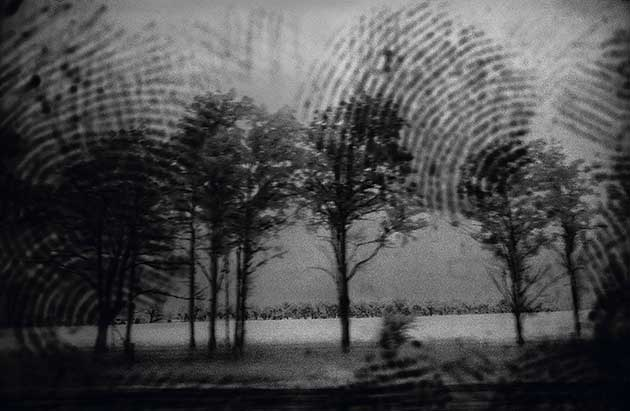 A Priori series, infared photograph, art, abstract, abstract expressionism, creative, landscape, trees, black, white
